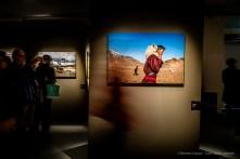 Steve-McCarry-Animals-Mudec-Photo-Milano-2018-©-Renato-Corpaci-14