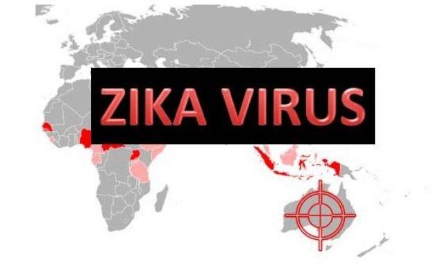 Il problema del virus Zita