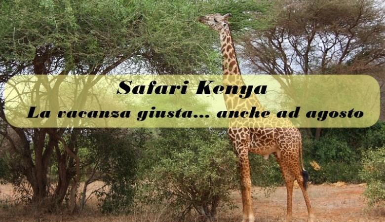 safari kenya