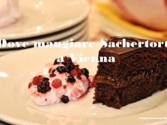Dove mangiare Sacher torte a Vienna