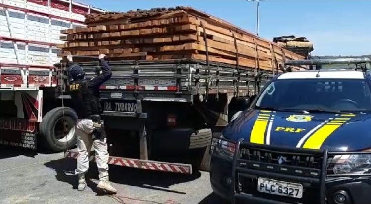 PRF apreendeu uma carga de madeira sem licença ambiental válida na BR-316.