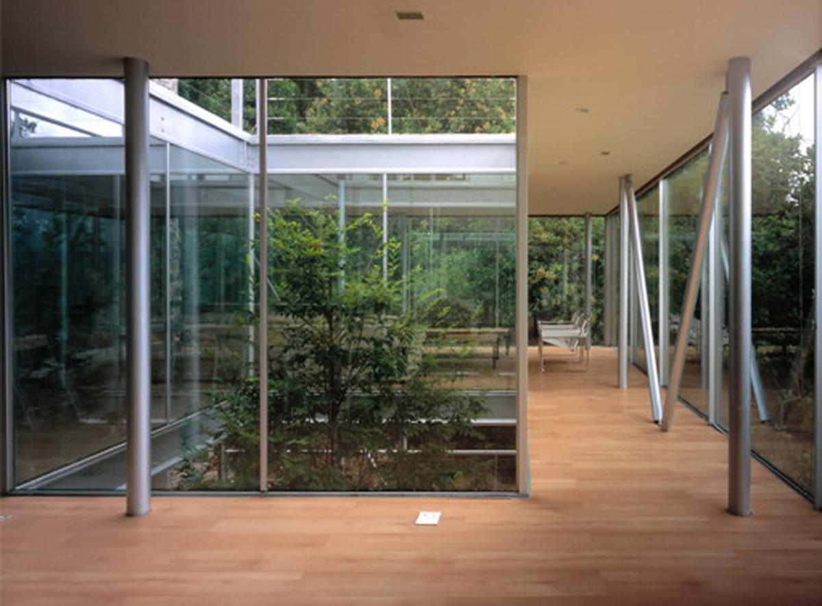 Minimalist Design With Tree Inside The House By Undurraga