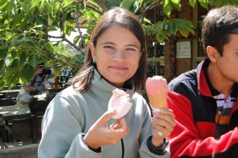 Helado de fresa con merengue de fresa en la granja de... fresas!!!