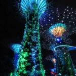 Show de luces en los súper árboles
