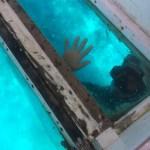 Los botes del tour de snorkeling suelen tener estas ventanas en el fondo