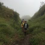 Caminando entre pastizales con poca visibilidad