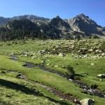 Las montañas cada vez más altas y con menos vegetación