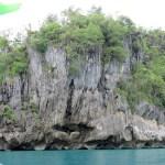 Rocas llenas de vegetación que son erosionadas por el mar