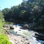 El río que trae tanto verde a esta zona