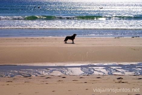 La playa de Louro Mejores playas de la Costa da Morta, Galicia