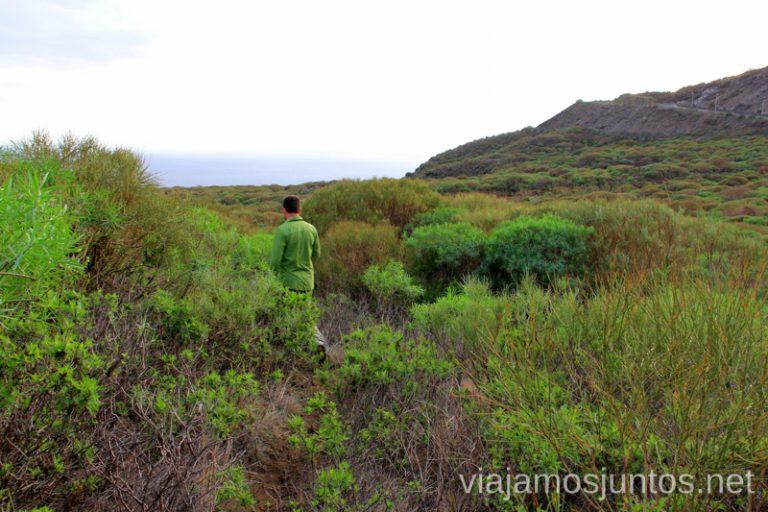 Buscando la playa del Azufre Las playas de la Palma, Islas Canarias. Mejores playas.