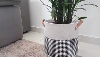 10 Ideias Para Personalizar Vasos De Plantas Viajando No Ape