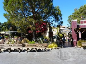 Rancho del Zocalo Restaurante