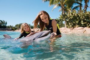 Discovery Cove – Tours