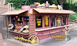 Frontierland Fries
