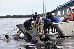 As equipes de resgate do SeaWorld estão auxiliando animais precisando de ajuda em virtude do rigoroso inverno que está atingindo todo os Estados Unidos