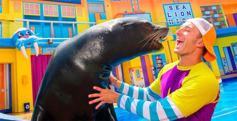 Sea Lions Up-Close Tour