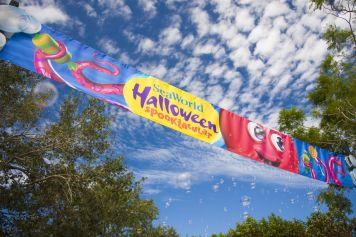 Halloween Sooktacular - SeaWorld Orlando - Halloween Spooktacular Event Pathway