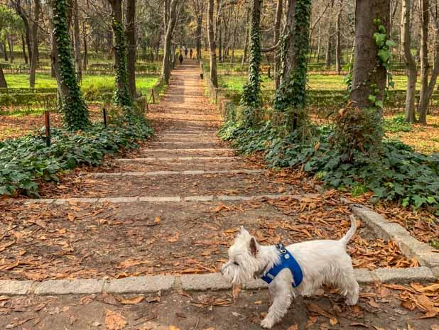 Parque el Retiro Madrid Andaluzia: roteiro de viagem