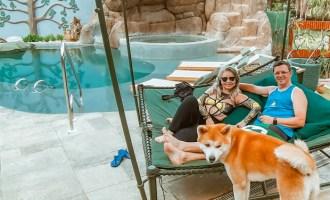 Hotéis pet friendly na Chapada dos Veadeiros