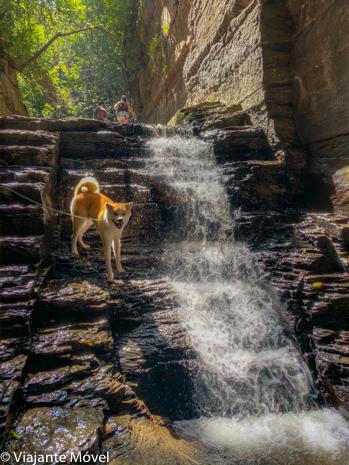 Cachoeira pet friendly em Três Marias, Minas Gerais