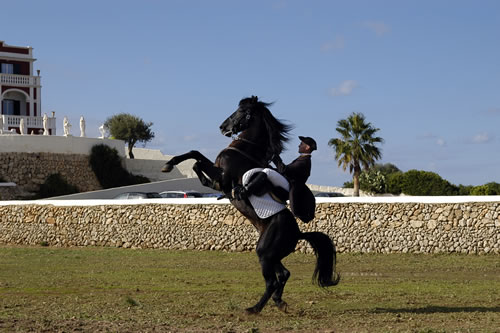 El Caballo Menorquin