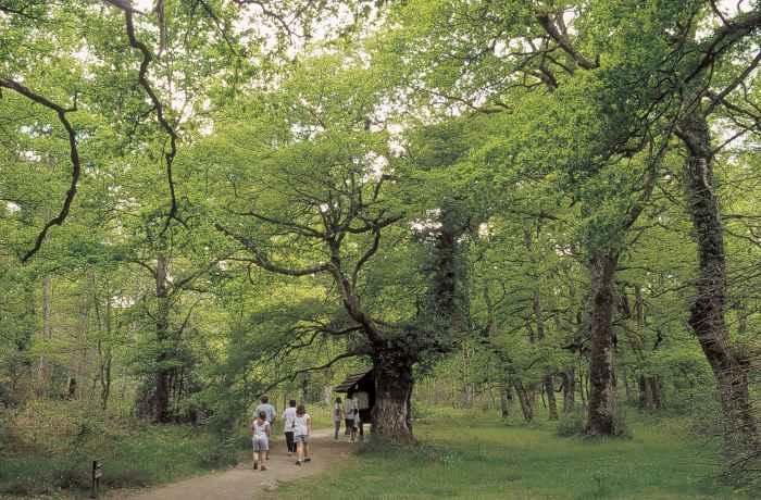 Navarra, paraíso de los amantes de la naturaleza y el ecoturismo