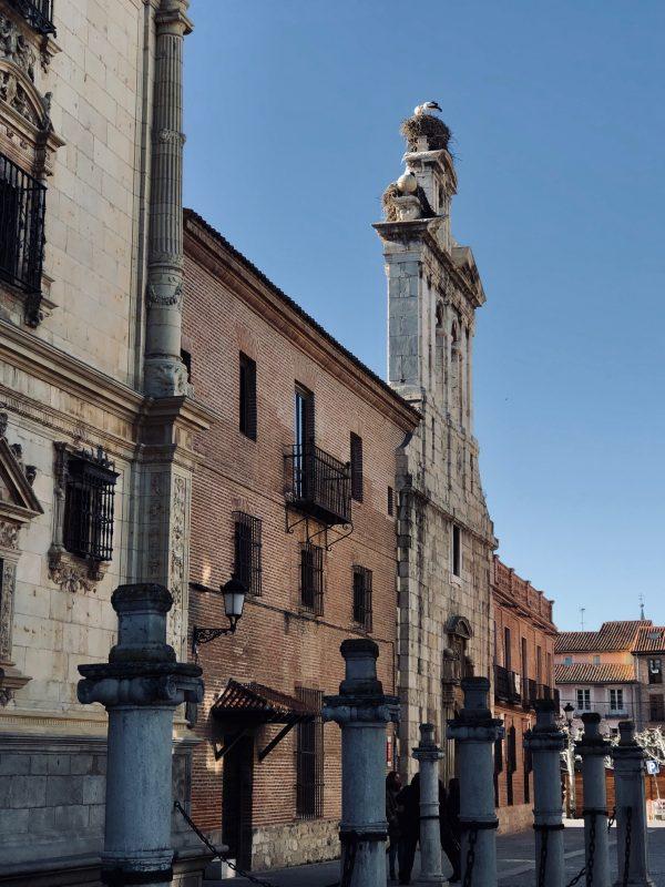 Colegio de San Ildefonso Capilla Alcalá de Henares