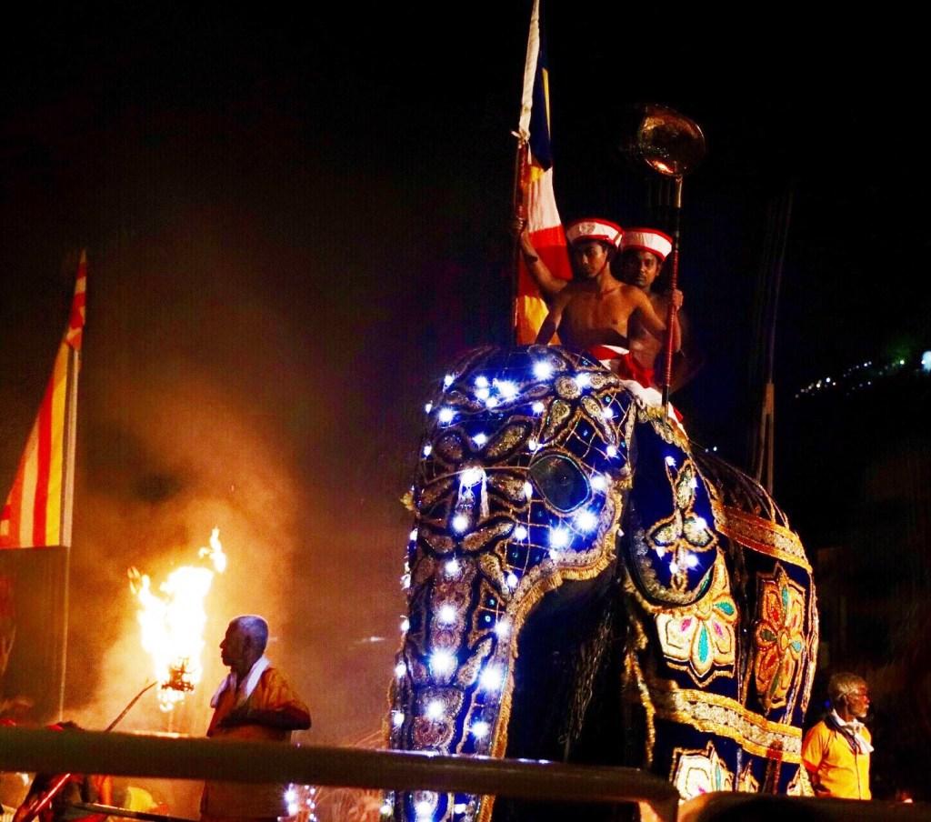 Elefante decorado con luces para el festival