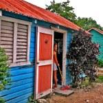 Los Colores Del Campo Dominicano
