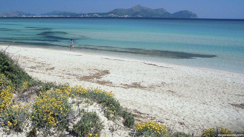 Playa de Muro en la isla de Mallorca
