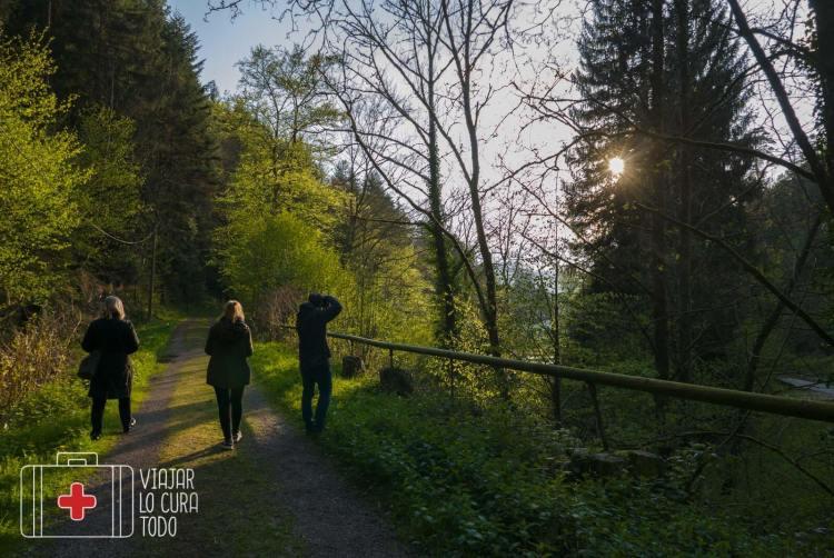 Panoramicweg Baden Baden