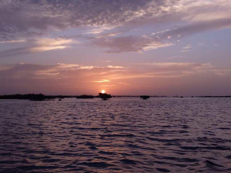 Nguel du Saloum Senegal