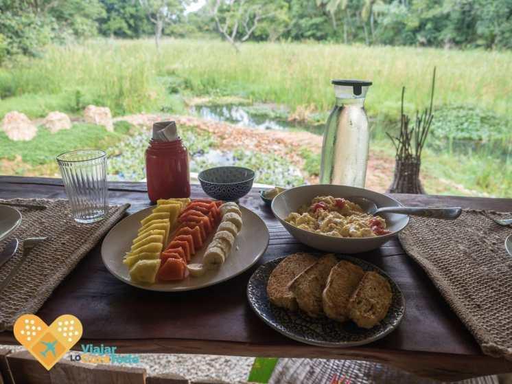 Desayunos en plena naturaleza