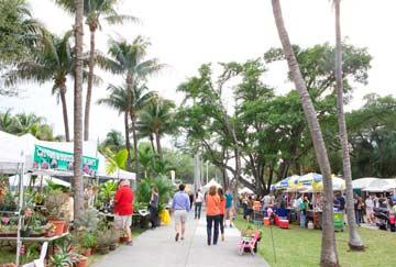 Festival de Arte Coconut Grove