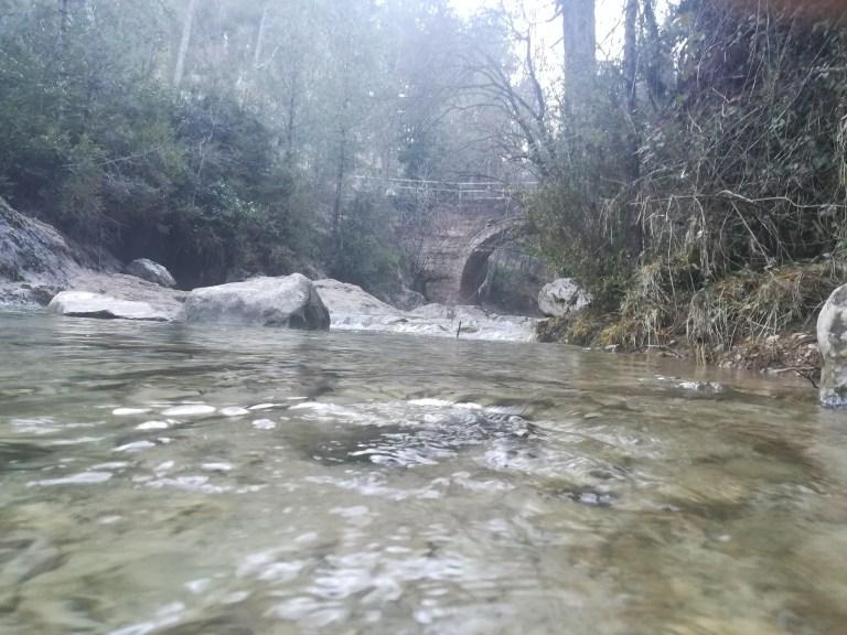 Ruta desde el Puente de las Herrerías hasta Poyos de la Mesa pasando por el Pino Abuelo