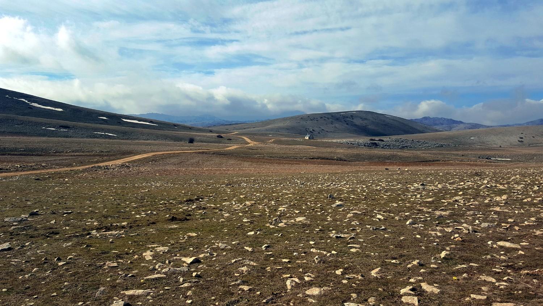 Los solitarios campos de Hernán Perea