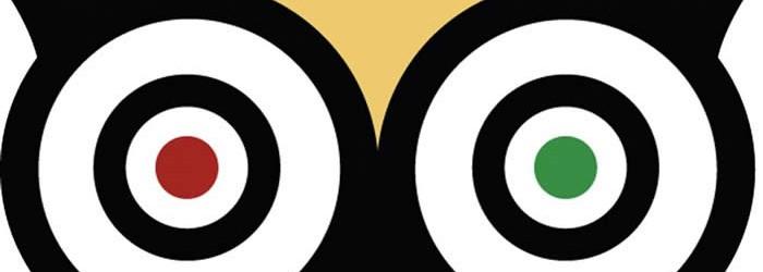 tripadvisor-logo-700x250