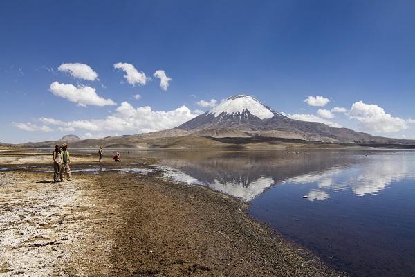 Arica - Parque Nacional Lauca