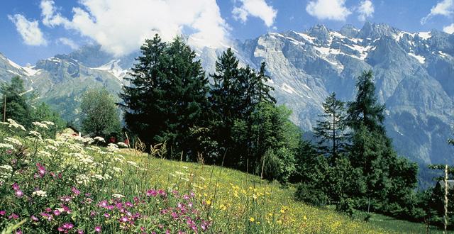 Lago de Lucerna, la joya de los Alpes