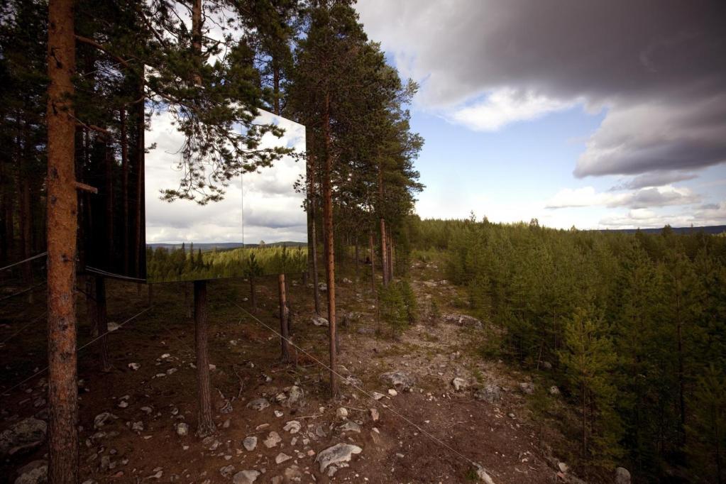 Harads Forest, Sweden