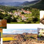 Las cinco estaciones turísticas de Navarra