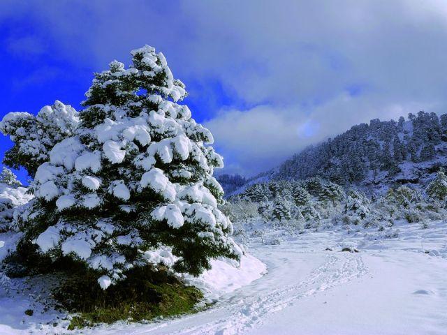 Ronda: entre preciosos parques naturales