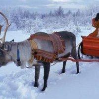 Viagem à capital da Lapónia, onde é Natal todo o ano