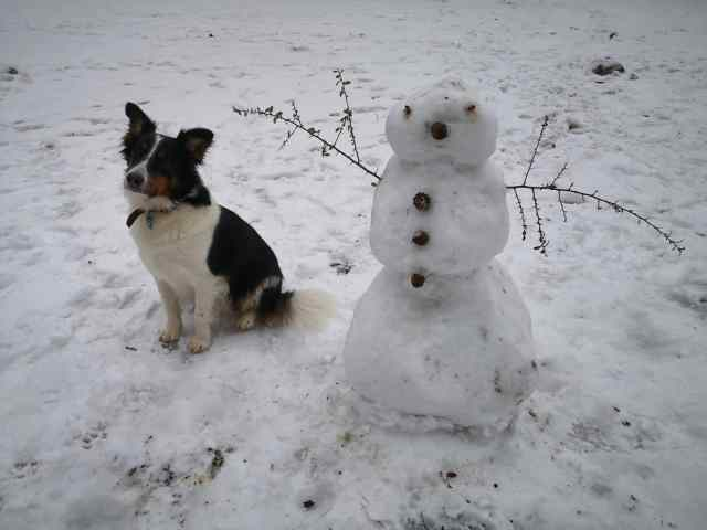 Muñeco de nieve en berlín y un perrito