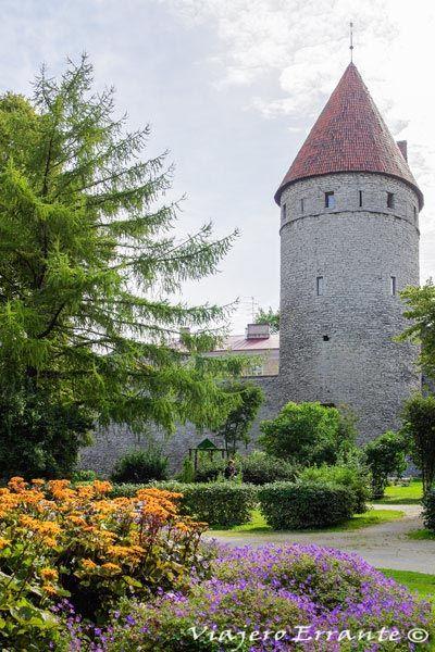 torre de la vieja muralla en Tallin
