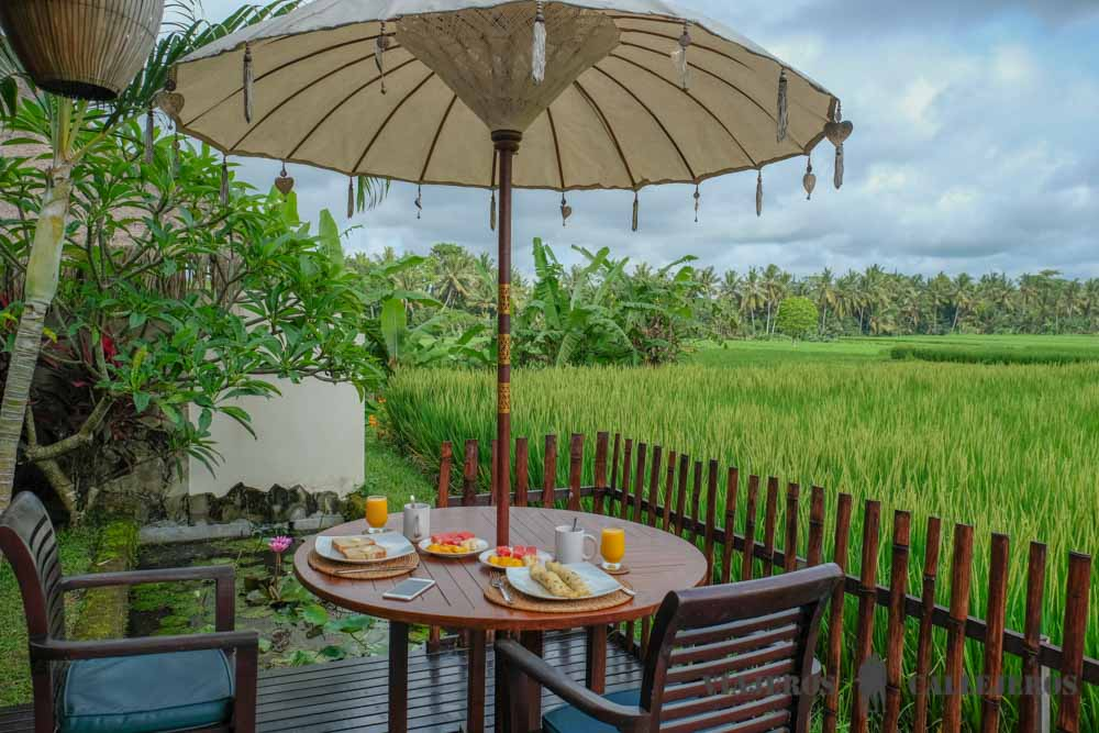 Nuestra casa en Bali reservada con AirBnb, el mejor buscador de apartamentos y casas para preparar un viaje