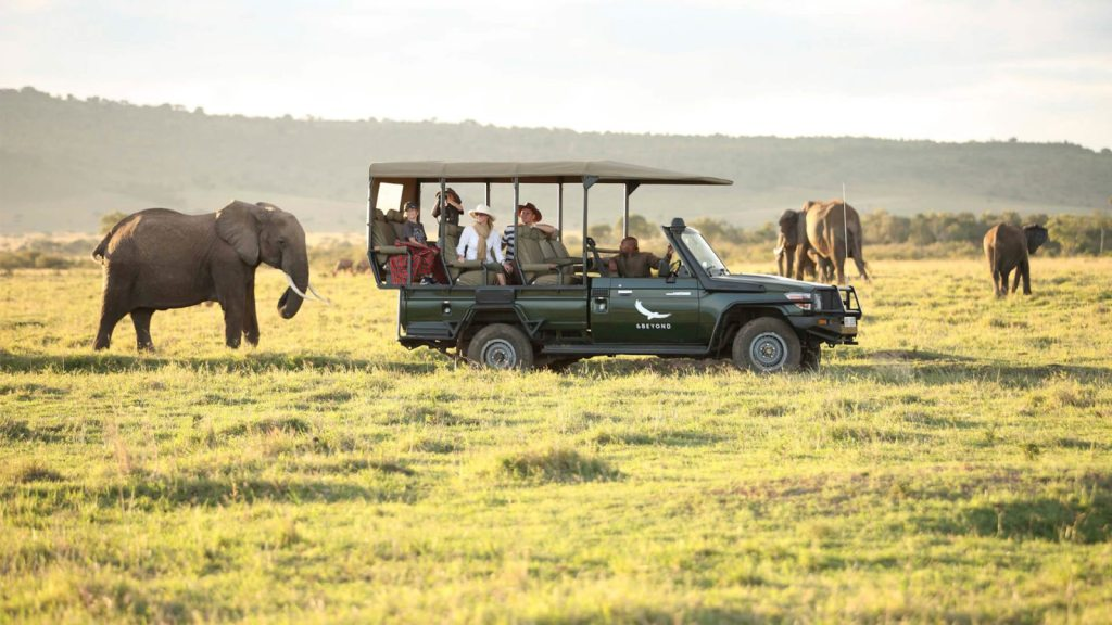 elephants-on-a-game-drive-in-the-masai-mara-1600×900