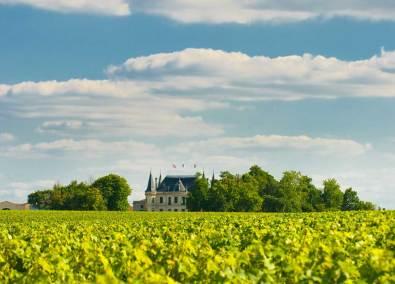 Château Margaux - Vignoble Bordelais
