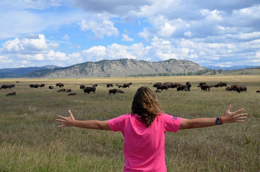 15 postales desde Grand Teton National Park
